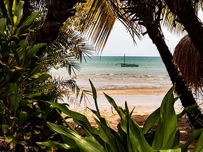 Cross Border Mozambique